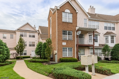North Brunswick Twp. Condo/Townhouse For Sale: 411 Plymouth Rd