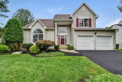 Scotch Plains Twp. Single Family Home For Sale: 24 Treeview Cir