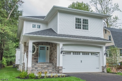 Livingston Twp. Single Family Home For Sale: 33 Brookside Ave