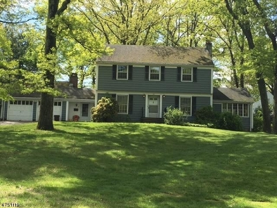 Boonton Town Single Family Home For Sale: 311 Hillside Ave