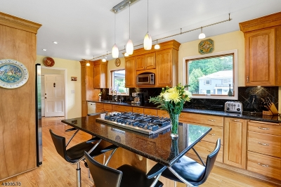 Maplewood Twp. Single Family Home For Sale: 18 Lewis Dr