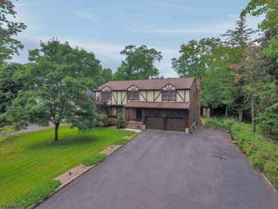 Scotch Plains Twp. Single Family Home For Sale: 867 Raritan Rd