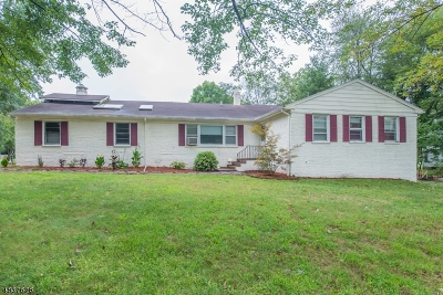 Parsippany-Troy Hills Twp. Single Family Home For Sale: 589 Greenbank Rd