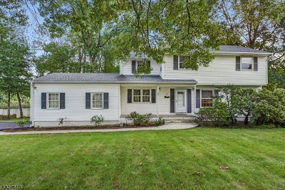 Livingston Twp. Single Family Home For Sale: 22 Country Club Rd