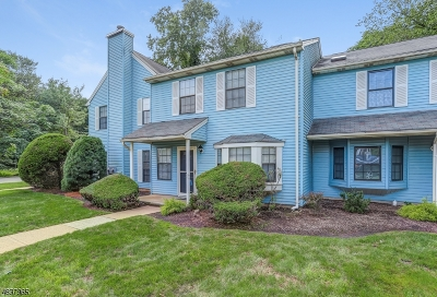 Edison Twp. Condo/Townhouse For Sale: 3202 Stonehedge Rd