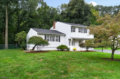 Parsippany-Troy Hills Twp. Single Family Home For Sale: 36 Westminster Dr