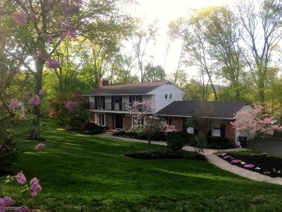 Morris Twp. Single Family Home For Sale: 21 Hilltop Cir