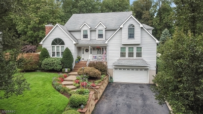 Randolph Twp. Single Family Home For Sale: 10 Eagle Ct