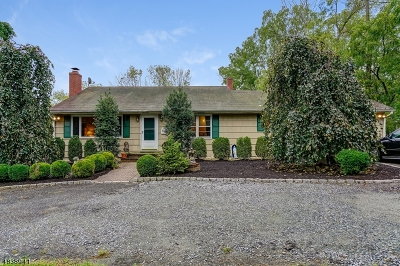 Parsippany-Troy Hills Twp. Single Family Home For Sale: 299 E Halsey Rd