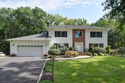 Scotch Plains Twp. Single Family Home For Sale: 2258 Redwood Rd