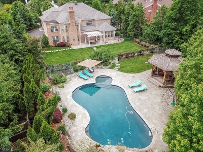 Millburn Twp. Single Family Home For Sale: 46 Great Hills Ter