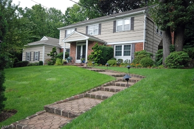Springfield Twp. Single Family Home For Sale: 990 Chimney Ridge Dr