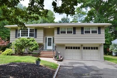 West Orange Twp. Single Family Home For Sale: 20 Steven Ter