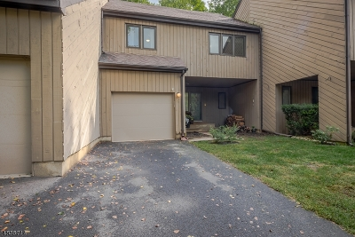 Morristown Town NJ Condo/Townhouse For Sale: $499,000