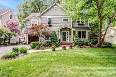 WESTFIELD Single Family Home For Sale: 521 Topping Hill Road