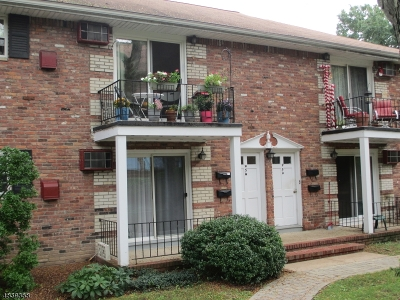 Morristown Town NJ Condo/Townhouse For Sale: $269,000