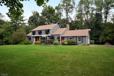 Scotch Plains Twp. Single Family Home For Sale: 1 Wellington Downs