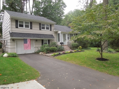 Scotch Plains Twp. Single Family Home For Sale: 204 Byrd Ave