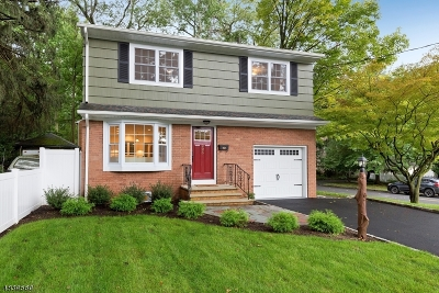 WESTFIELD Single Family Home For Sale: 926 Rahway Ave