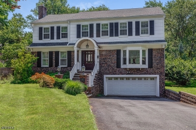Millburn Twp. Single Family Home For Sale: 300 S Taylor Rd