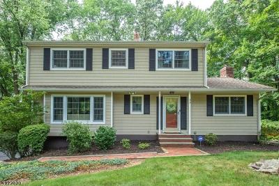 Randolph Twp. Single Family Home For Sale: 33 Treaty Rd