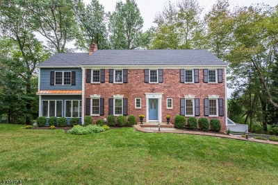 Chatham Twp. Single Family Home For Sale: 26 Nicholson Dr
