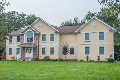 Parsippany-Troy Hills Twp. Single Family Home For Sale: 12 Aida Ct