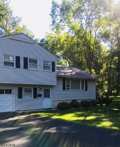 Florham Park Boro Single Family Home For Sale: 2 Elm Street