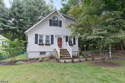 Cranford Twp. Single Family Home For Sale: 268 Bloomingdale Ave