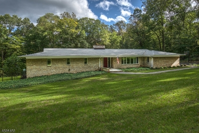 Bernardsville Boro Single Family Home For Sale: 29 Old Wood Rd