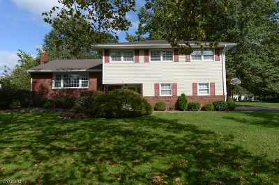 Parsippany-Troy Hills Twp. Single Family Home For Sale: 7 Ringwood Dr