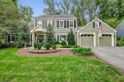 Chatham Twp. Single Family Home For Sale: 19 Lisa Dr