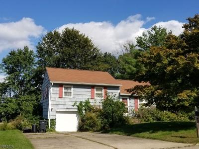 Hanover Twp. Single Family Home For Sale: 52 Locust Dr