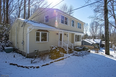 Randolph Twp. Single Family Home For Sale: 11 Pamela Dr
