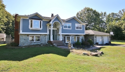 Scotch Plains Twp. Single Family Home For Sale: 10 Karen Ct