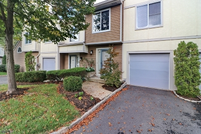 Springfield Twp. Condo/Townhouse For Sale: 903 Park Place #903