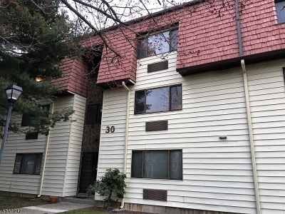 Belleville Twp. Condo/Townhouse For Sale: 46 Watsessing Ave Ub18