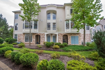 Livingston Twp. Condo/Townhouse For Sale: 705 Kensington Ln