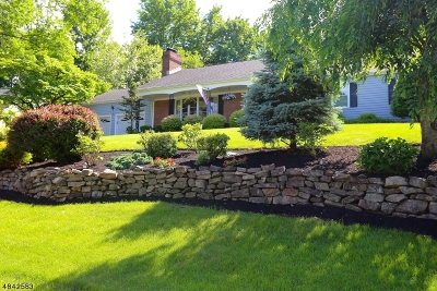Mountainside Boro Single Family Home For Sale: 491 Bayberry Ln