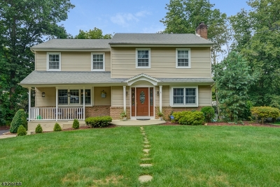 Randolph Twp. Single Family Home For Sale: 5 Sunset Dr