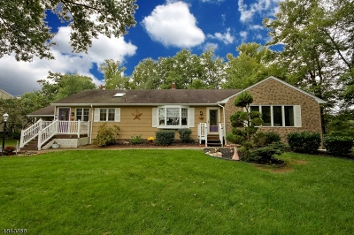 South Brunswick Twp. Single Family Home For Sale: 19 Monmouth Dr