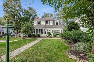 Morristown Town Single Family Home For Sale: 35 Sand Hill Rd