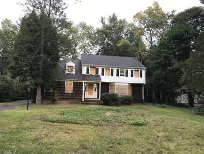 Summit City Single Family Home For Sale: 4 Warwick Rd