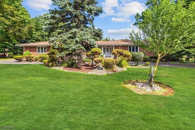 Woodbridge Twp. Single Family Home For Sale: 10 Sycamore Rd