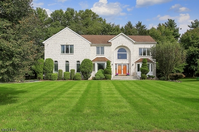 Scotch Plains Twp. Single Family Home For Sale: 38 Winchester Dr
