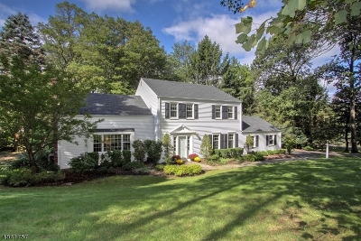 Morris Twp. Single Family Home For Sale: 21 Corn Hill Drive