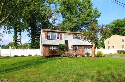 North Brunswick Twp. Single Family Home For Sale: 675 Darmody Ave