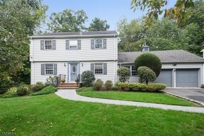 Livingston Twp. Single Family Home For Sale: 74 Ridge Dr