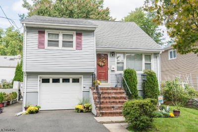 Parsippany-Troy Hills Twp. Single Family Home For Sale: 30 Ridgewood Ave