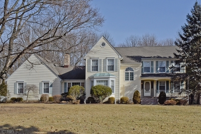 Randolph Twp. Single Family Home For Sale: 04 Winchester Terrace